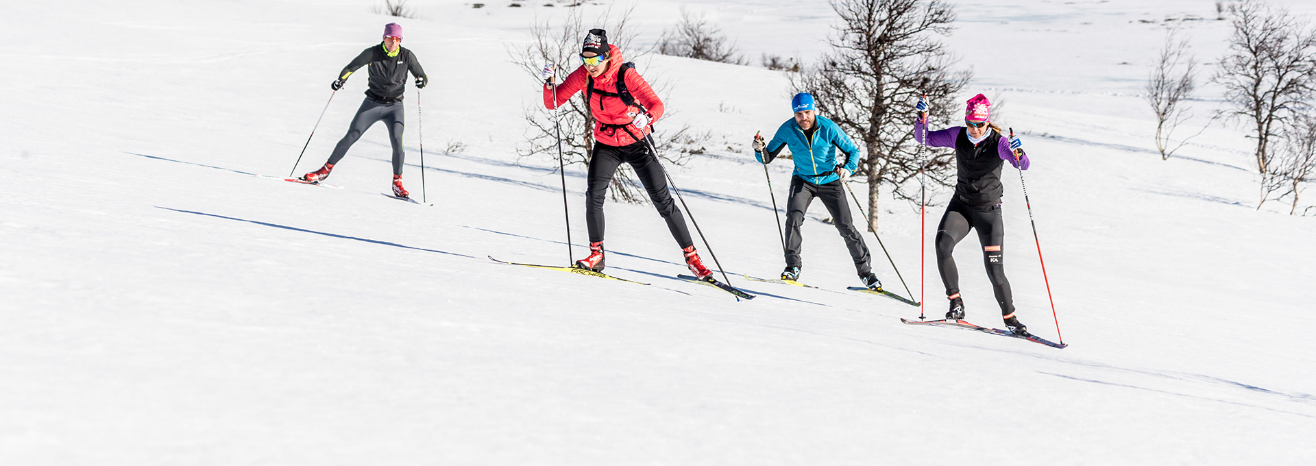 two cross-country skiers in the tracks